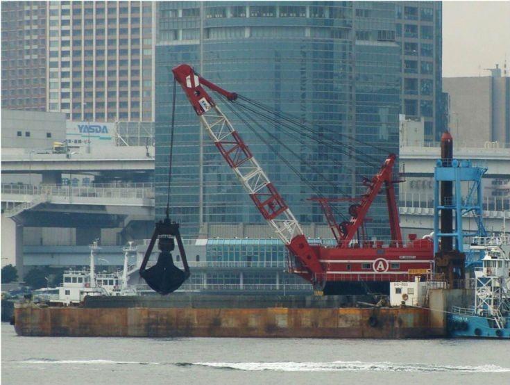 A Crane - Japan
